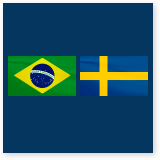 7th Brazilian Swedish Workshop in Aeronautics